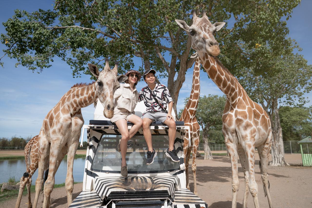 Safari z niespodzianką